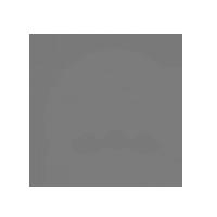 Logo_HVO_200_grau